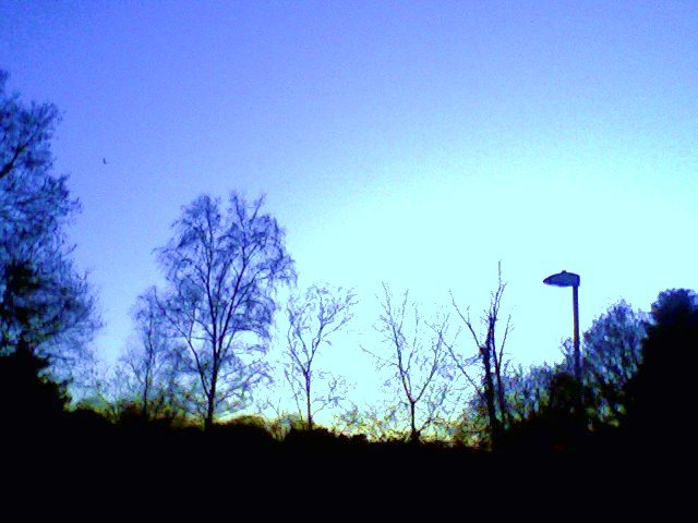 Blue-period