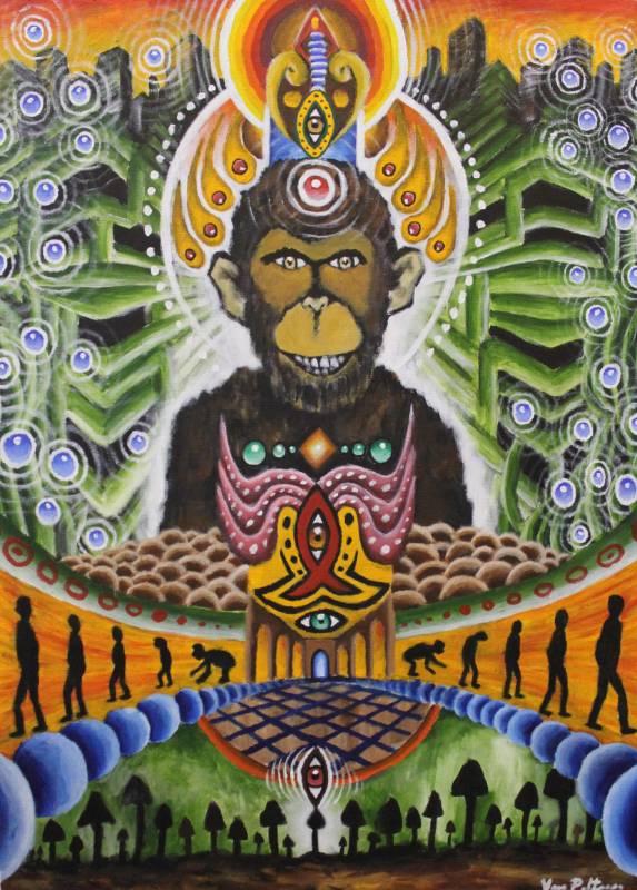 Psychedelic Evolution