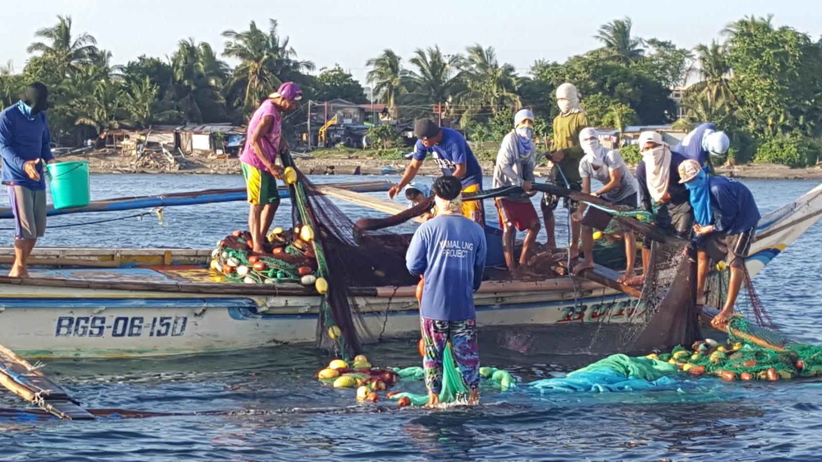 Ninja fishermen at work hauling their nets!