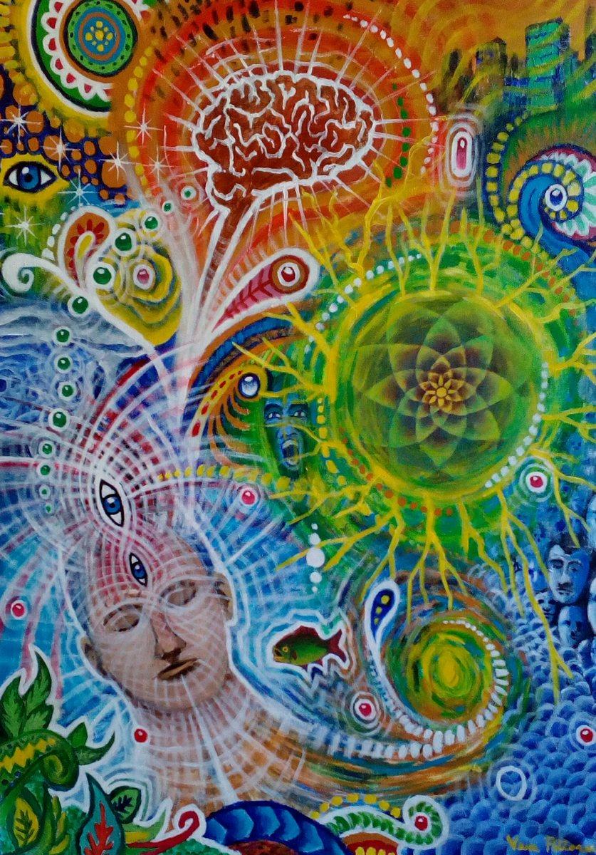 My psychedelic brain