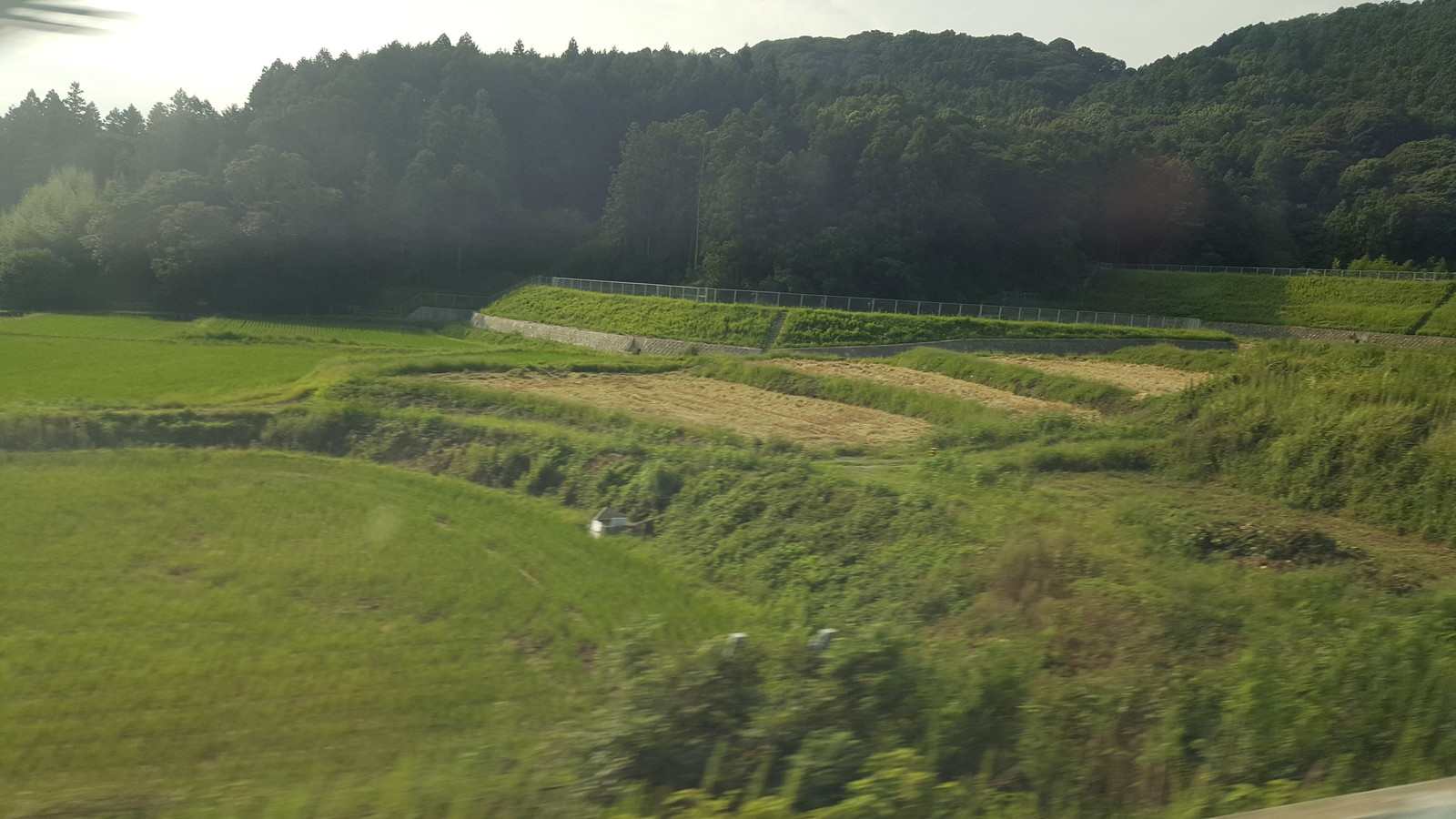 新幹線の窓口から外え見る。美しの景色です (Looking out of the window on the Shinkansen)