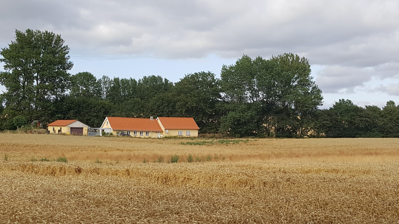 Denmark in summer!