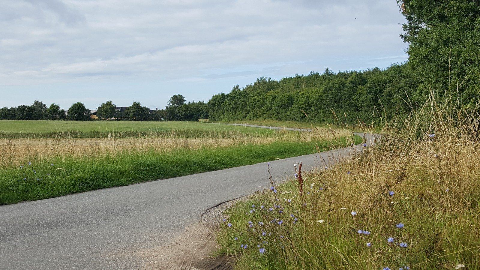 Beautiful summertime view - The road to the pub!