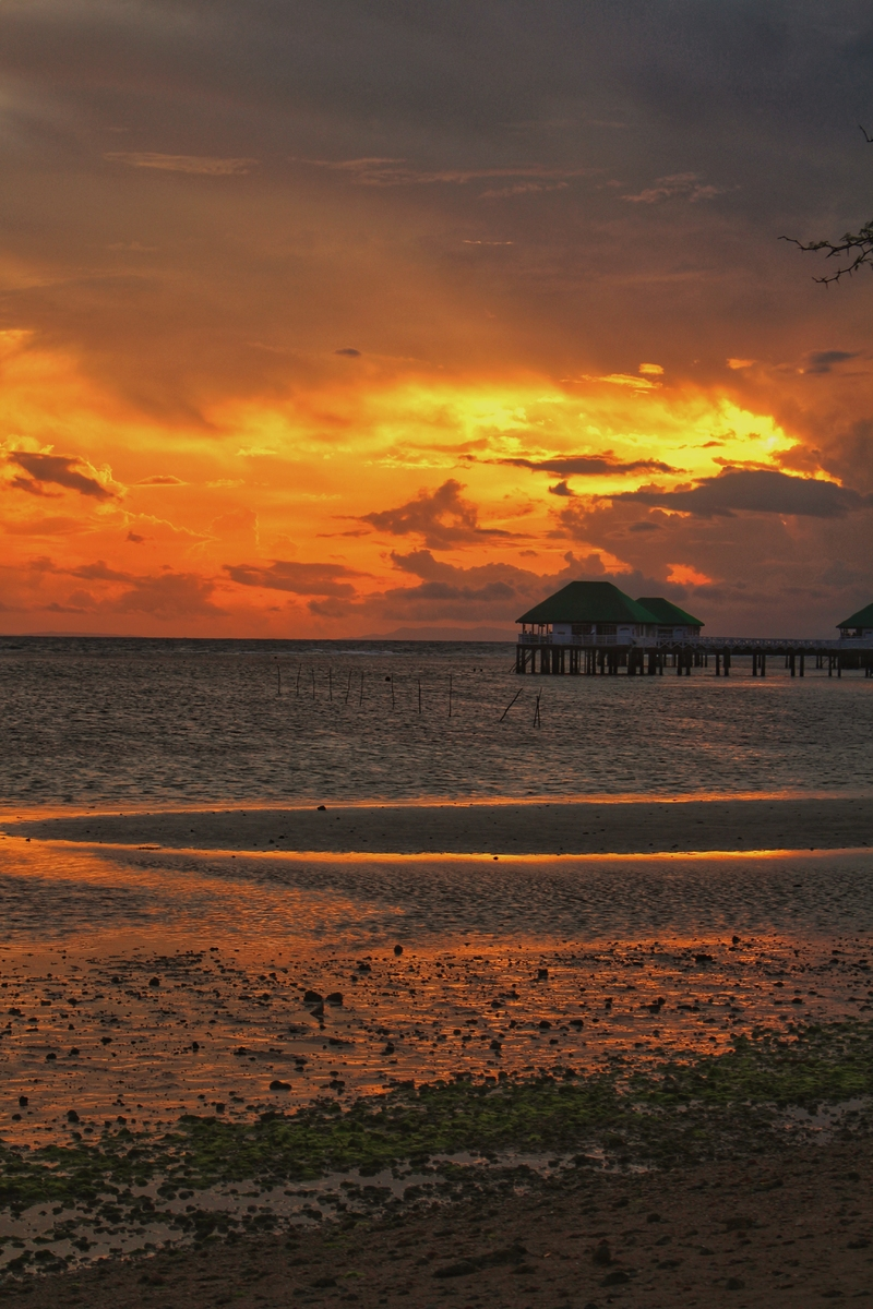 Tropical Sunset and the Sea at Manuel Uy Beach Resort