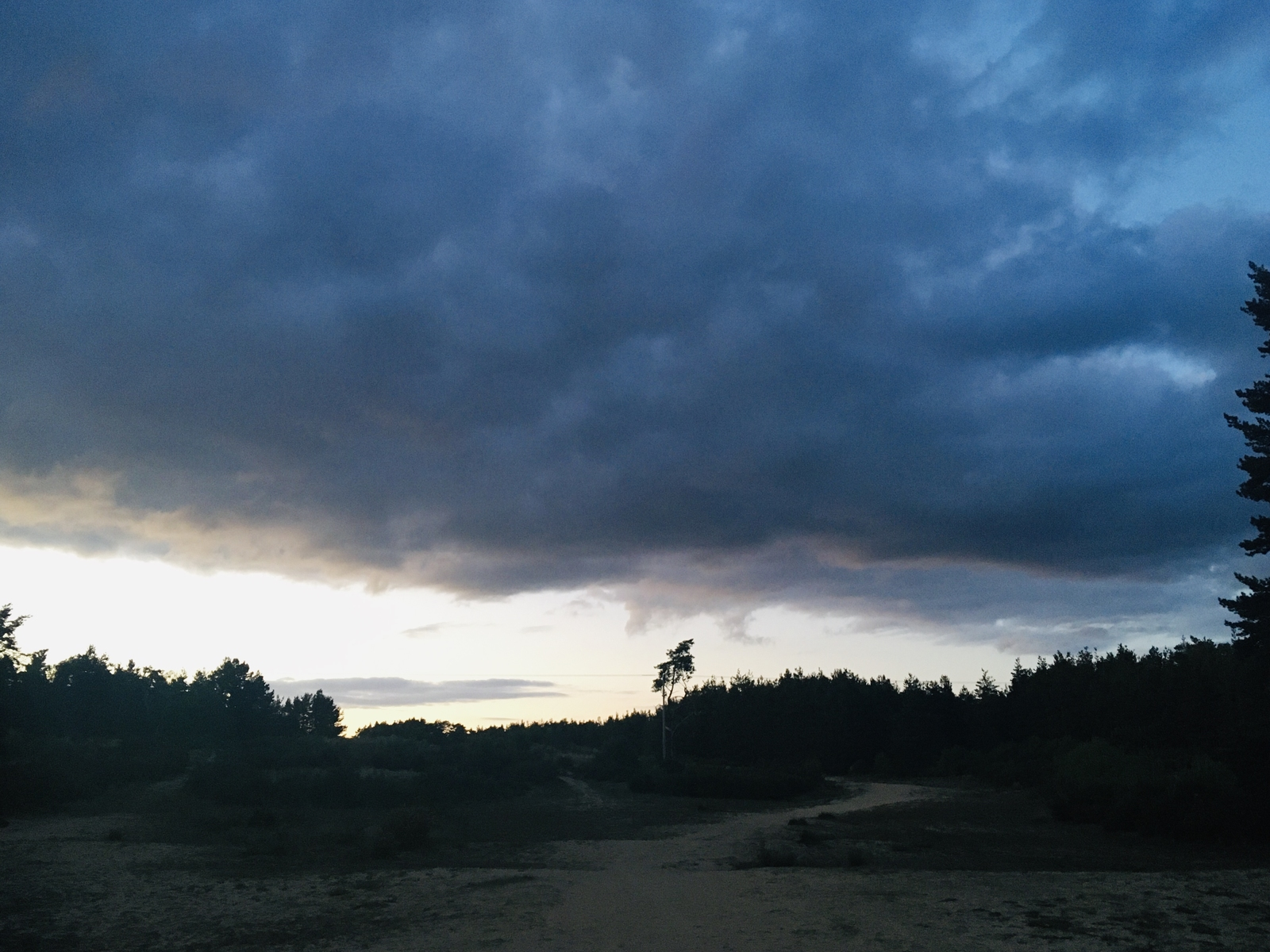 The storm clouds of Covid 19 are still here? View over the Hogmoor Inclosure, Whitehill, Hampshire