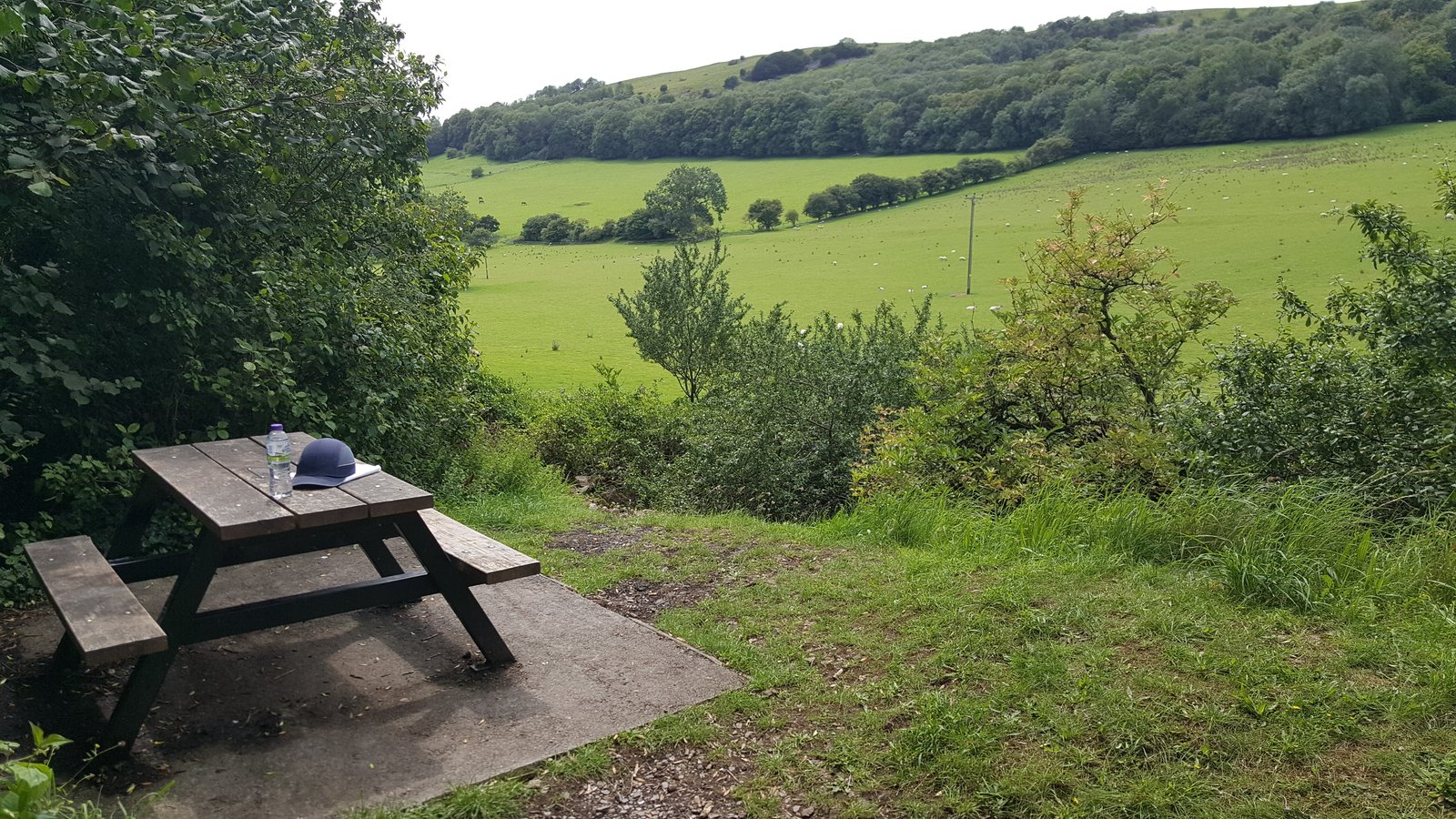 """Picnic table at my favourite """"secret"""" viewing spot along the old Strawberry Line trail"""