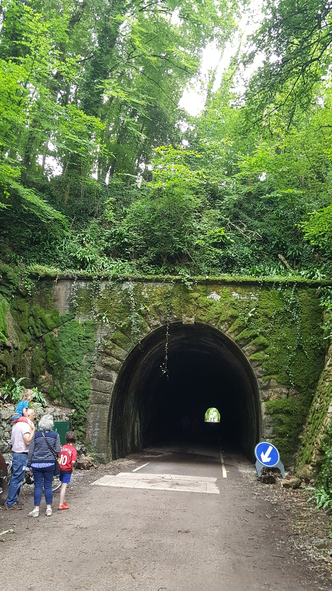 Shute Shelve Tunnel North Portal - Thinking About It!