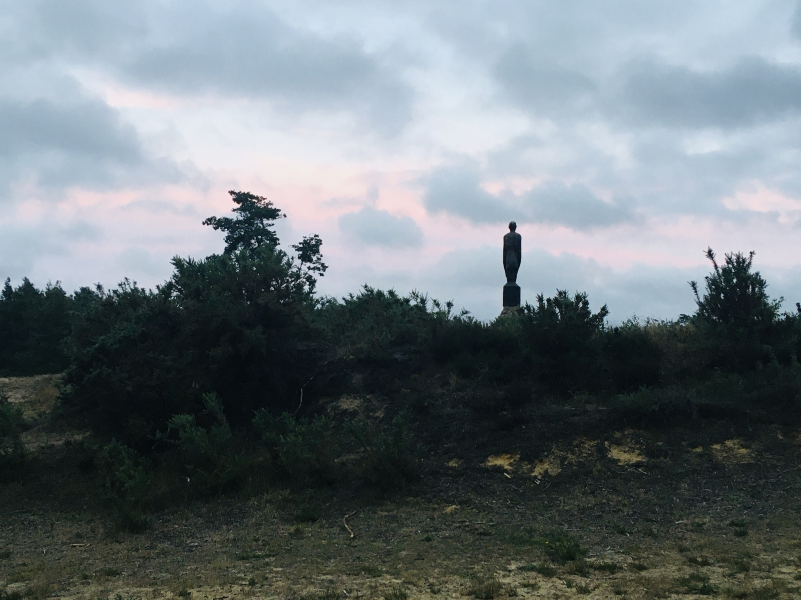 "Another Hogmoor Inclosure ""Sentinel"" contemplating Dusk"