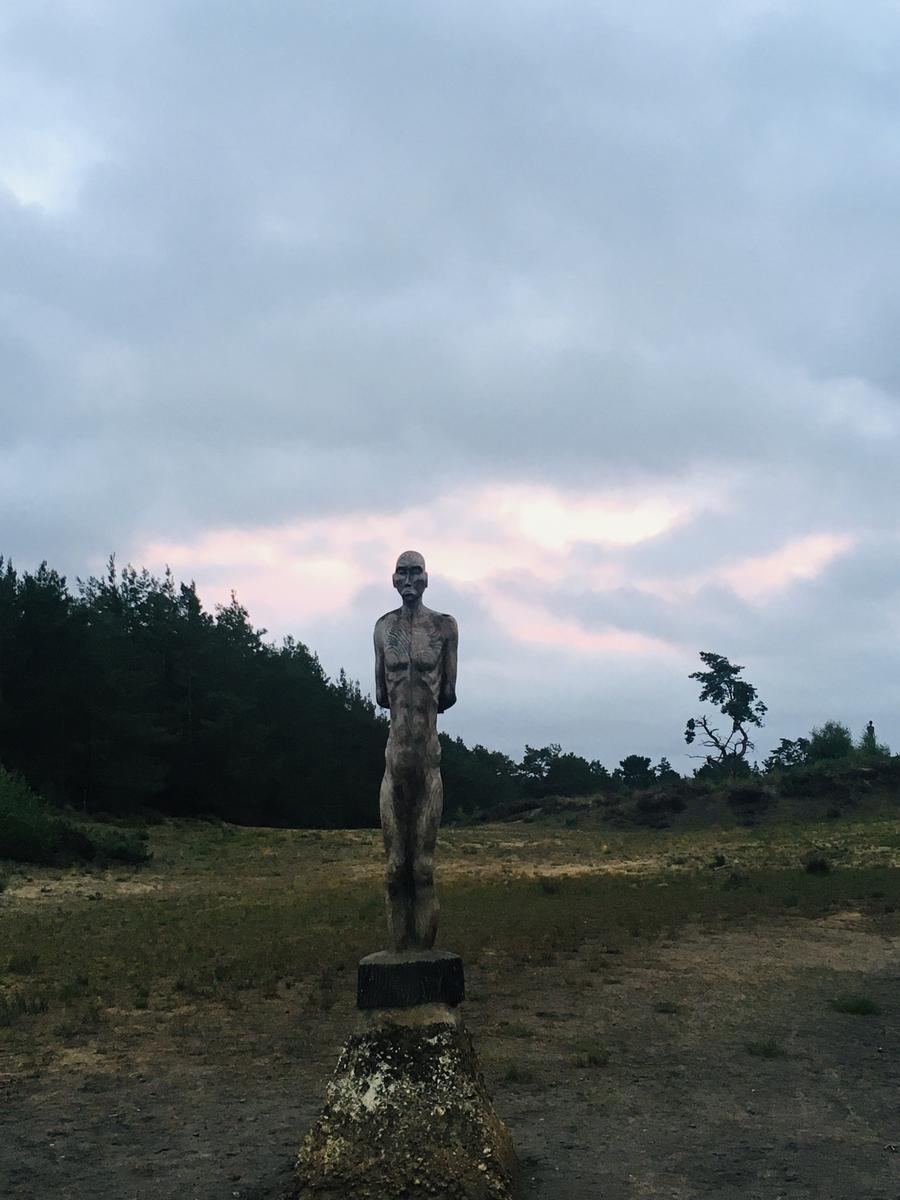 Hogmoor Sentinel at Dusk