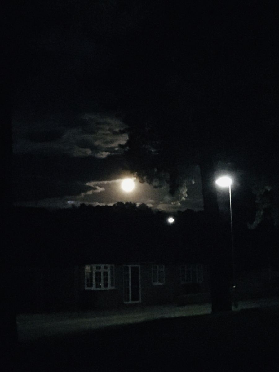 Moonrise above the houses.