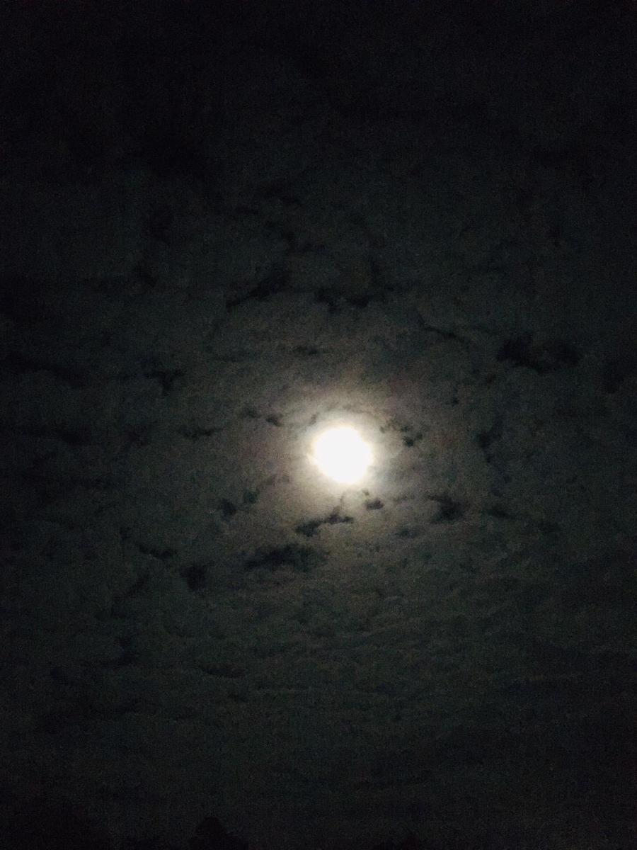 Cauliflower Moon